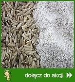 Bezglutenowo z mąką ryżową