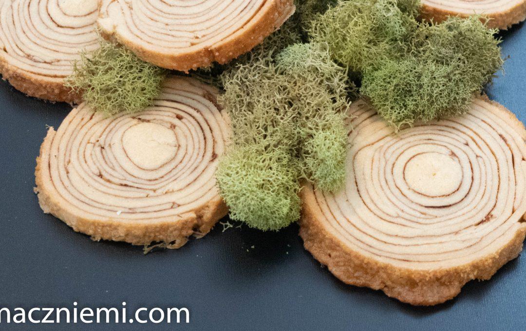 Ciasteczka– pień drzewa